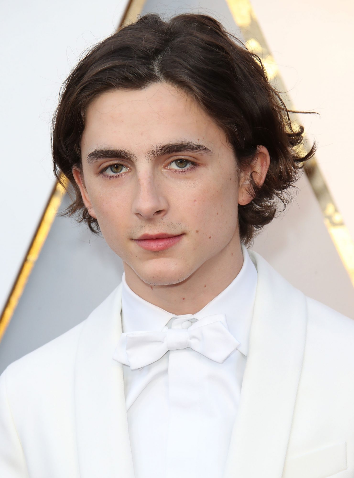 Timothee Chalamet Cut Off All Of His Hair Into A Bowl Cut Instyle