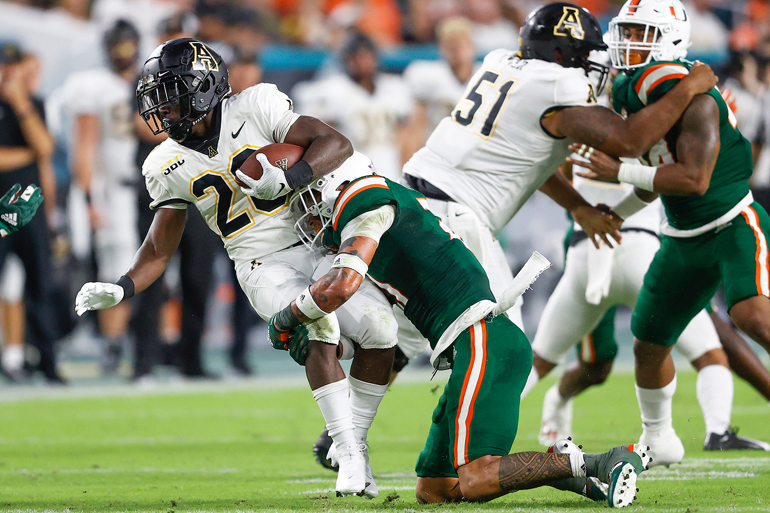 Cat Falls en Miami Hurricanes Game, Saved with an American Flag: ¡Mira!