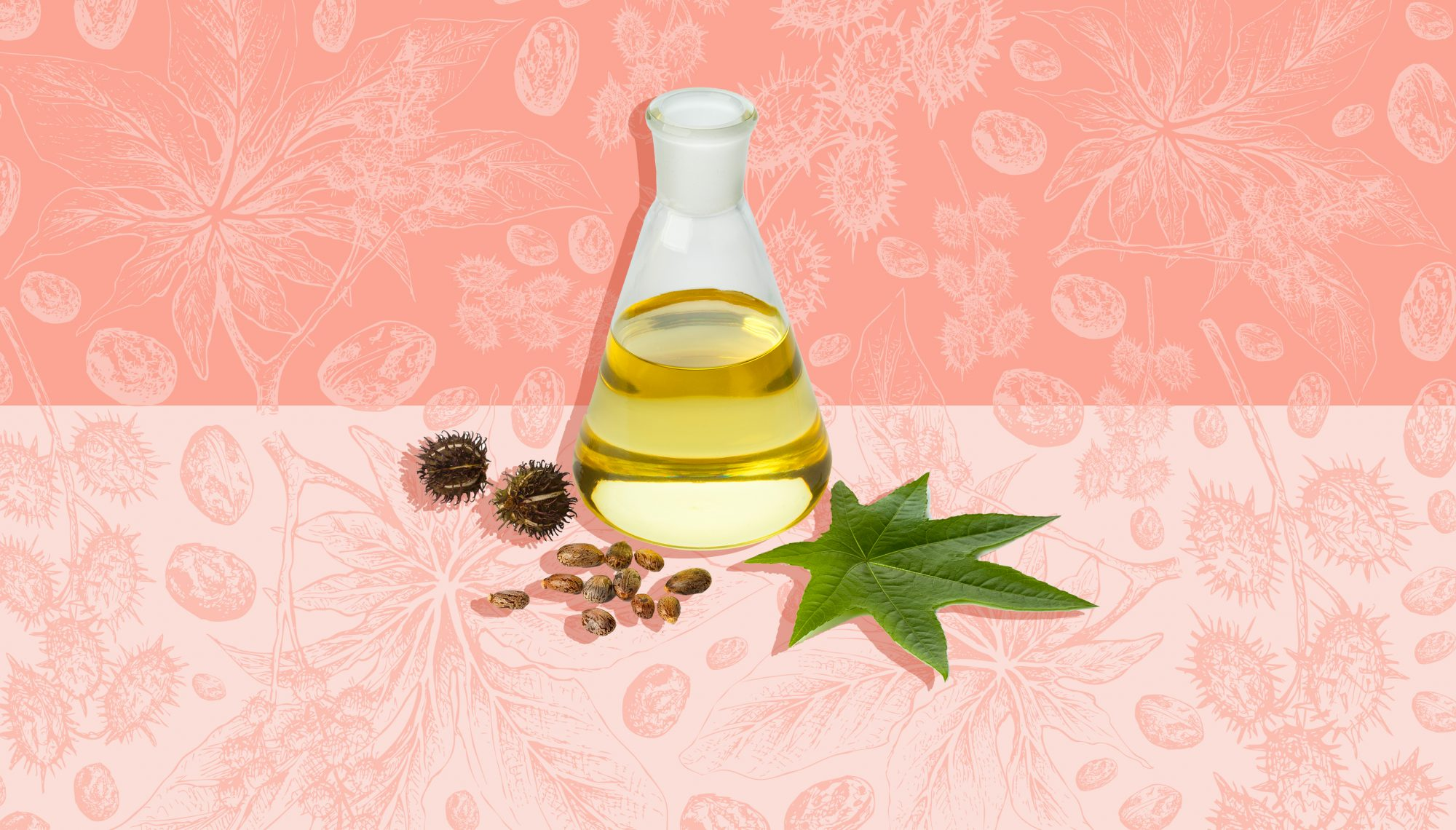 10 Amazing Castor Oil Uses in Your Beauty Routine  Real Simple