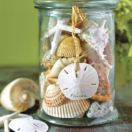 Diy How To Use Seashell Souvenirs To Decorate Your Home Southern Living