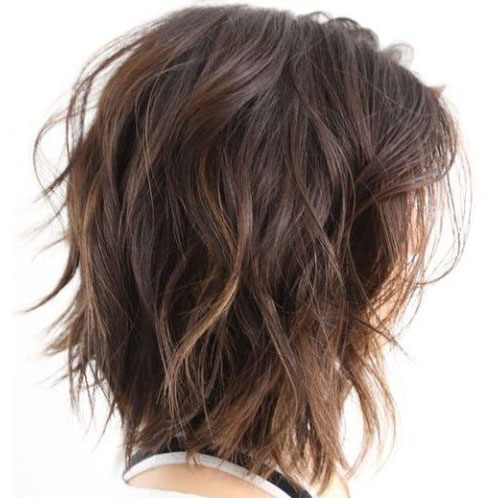 Back View Shoulder Length Layered Haircuts For Thick Hair 55