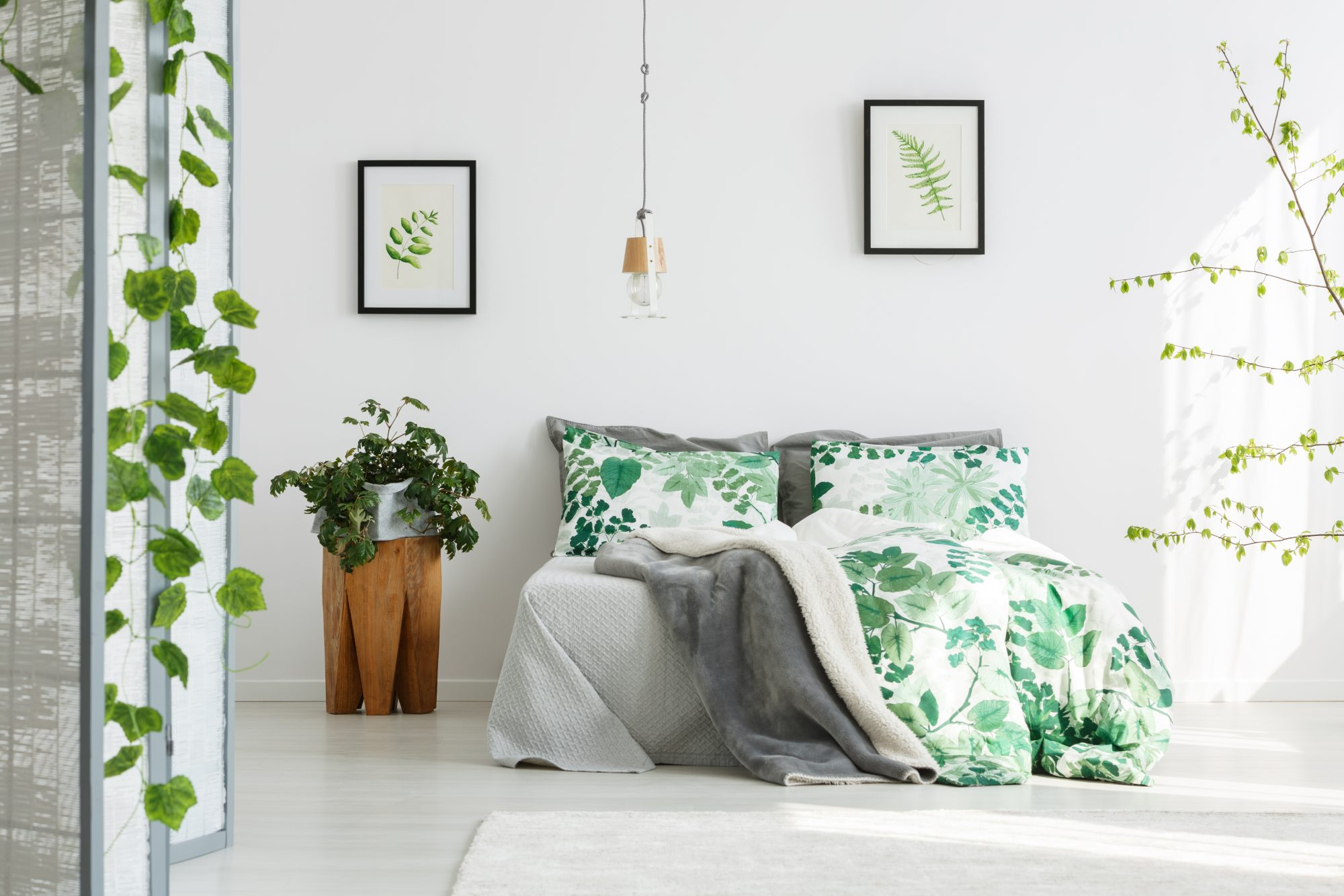 These Are The Best Plants For Bedrooms Southern Living
