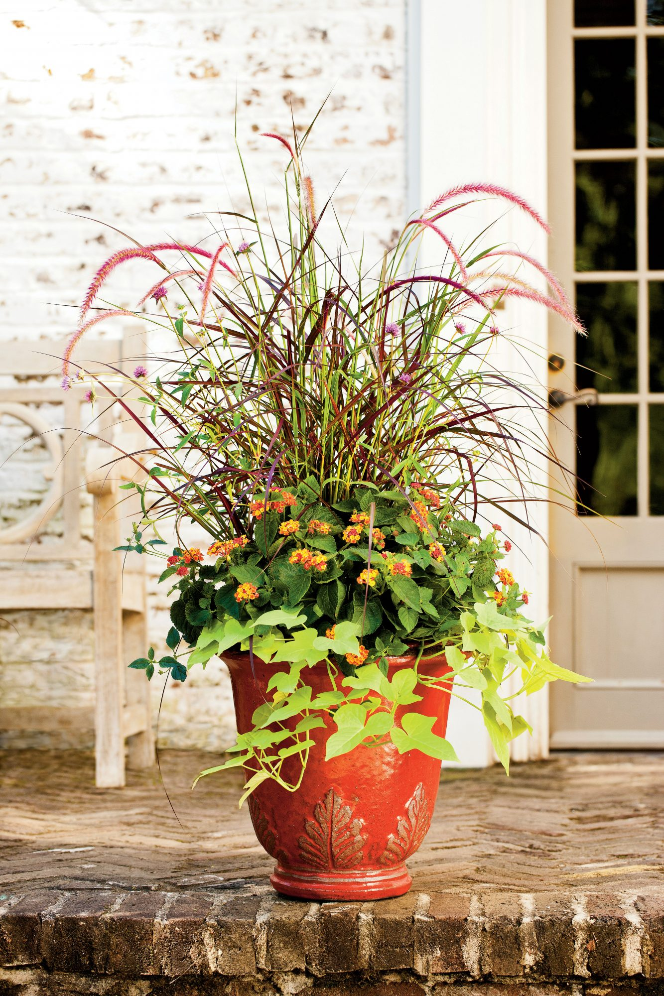 125 Container Gardening Ideas on