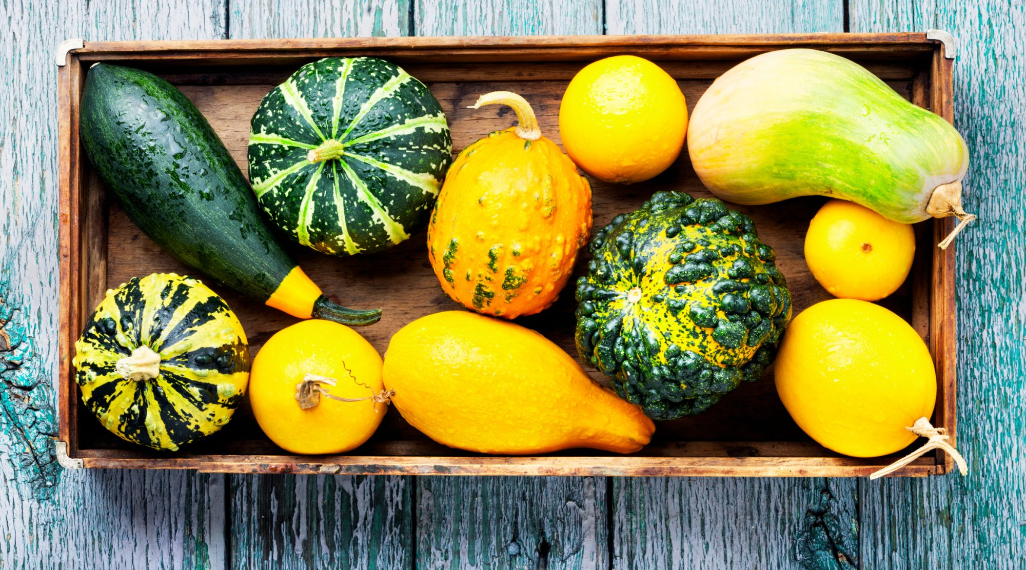 14 Types Of Squash Winter And Summer Squashes Southern Living