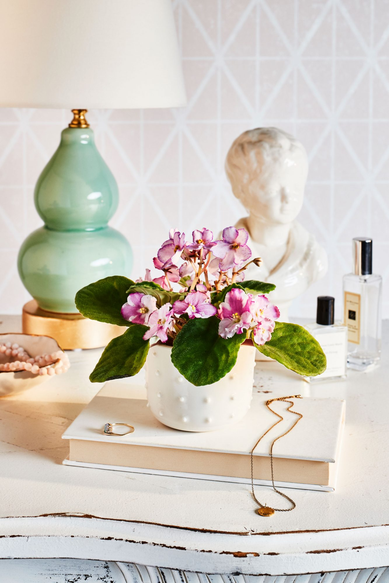 6 Flowering House Plants To Bring Color Indoors Southern Living