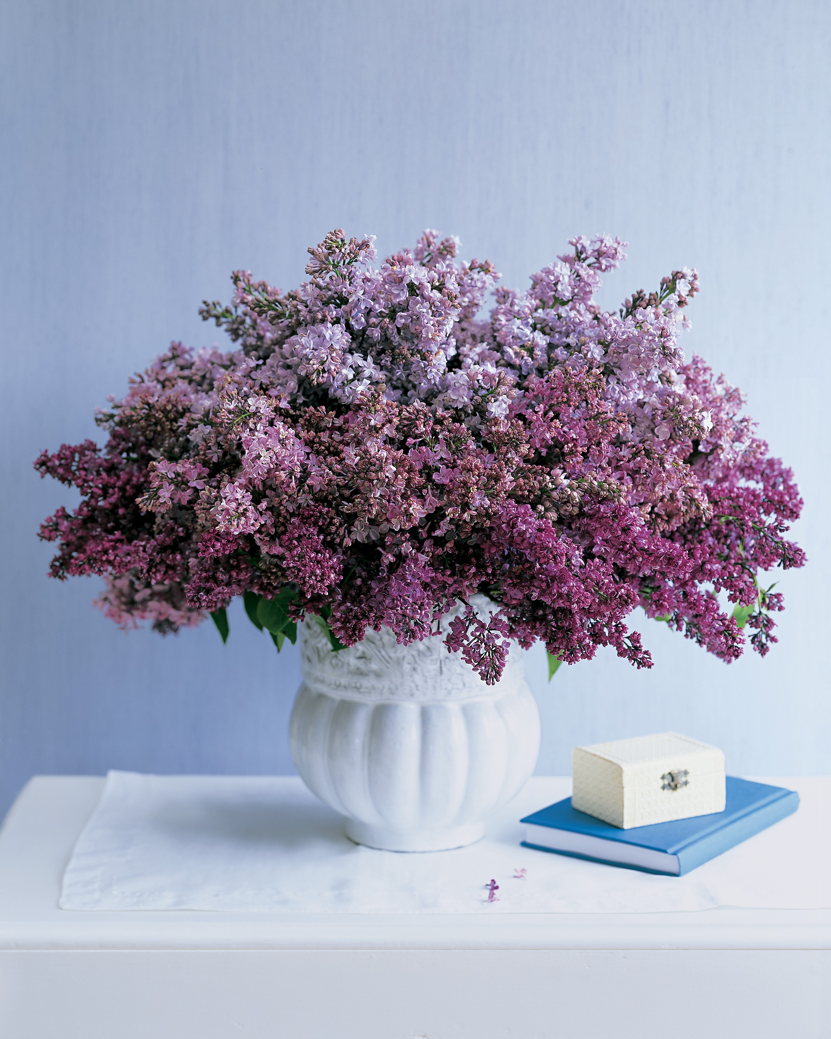 Lilacs from the Garden