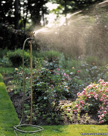 Tips for watering a vegetable garden its overflowing for Watering vegetable garden