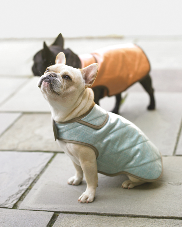 picture about Dog Coat Sewing Patterns Free Printable named 31 of Our Beloved Sewing Jobs Martha Stewart