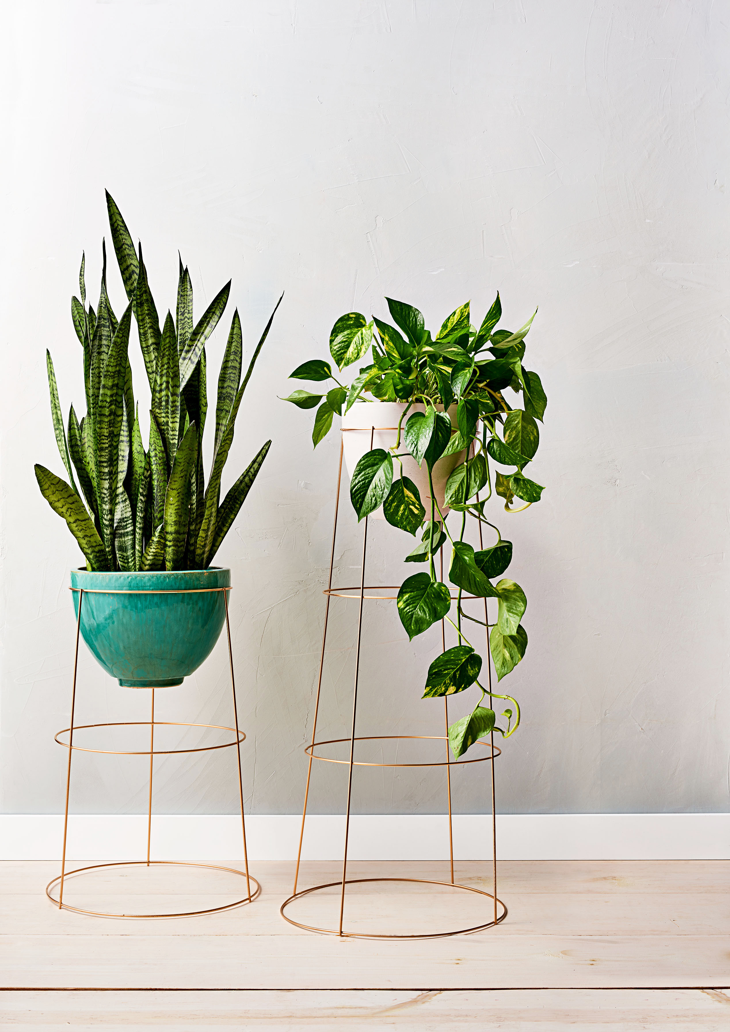 How To Make An Indoor Plant Stand Using A Tomato Cage Martha Stewart