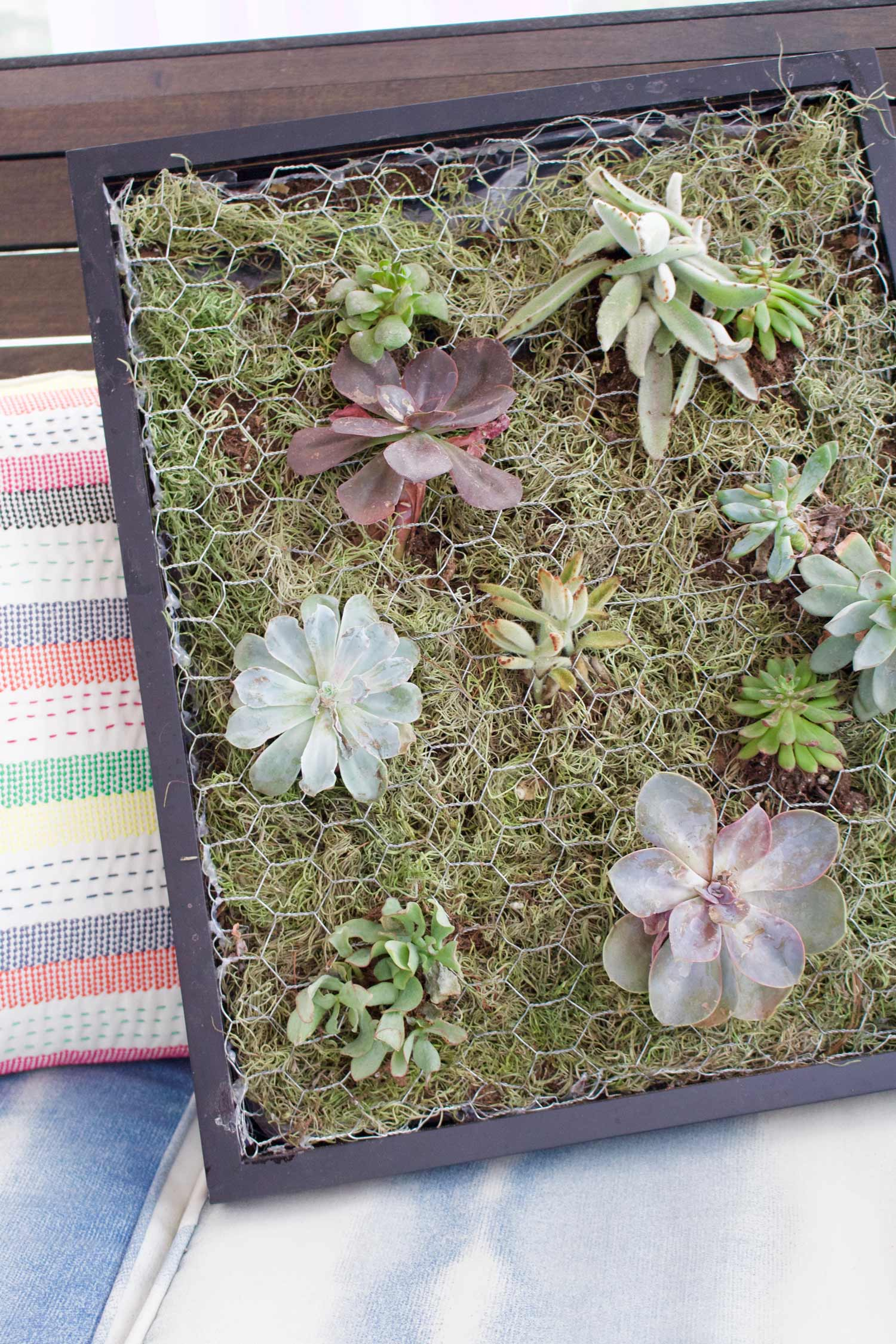 How To Build A Succulent Wall Planter Martha Stewart