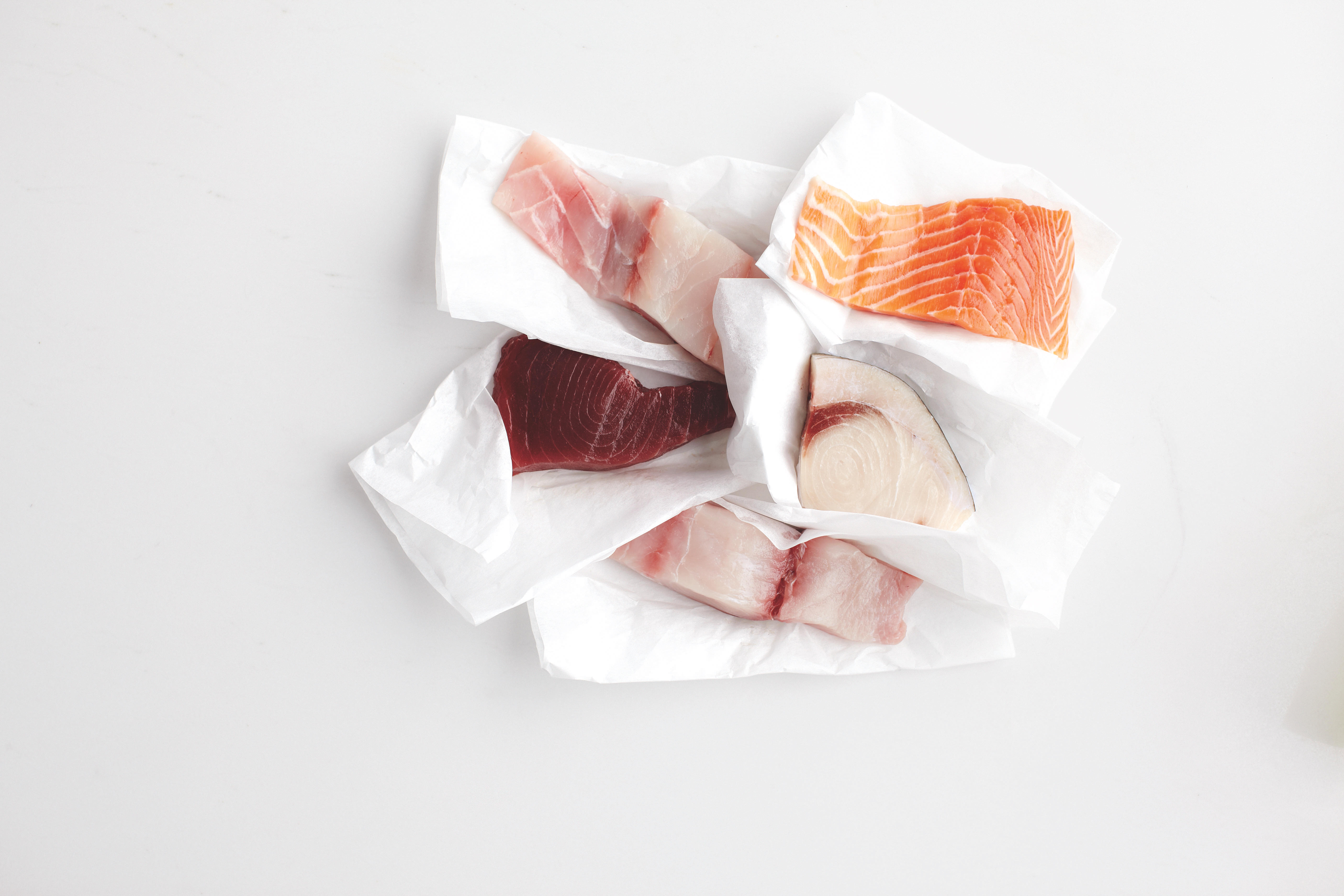 Storing Fish: What You Need to Know