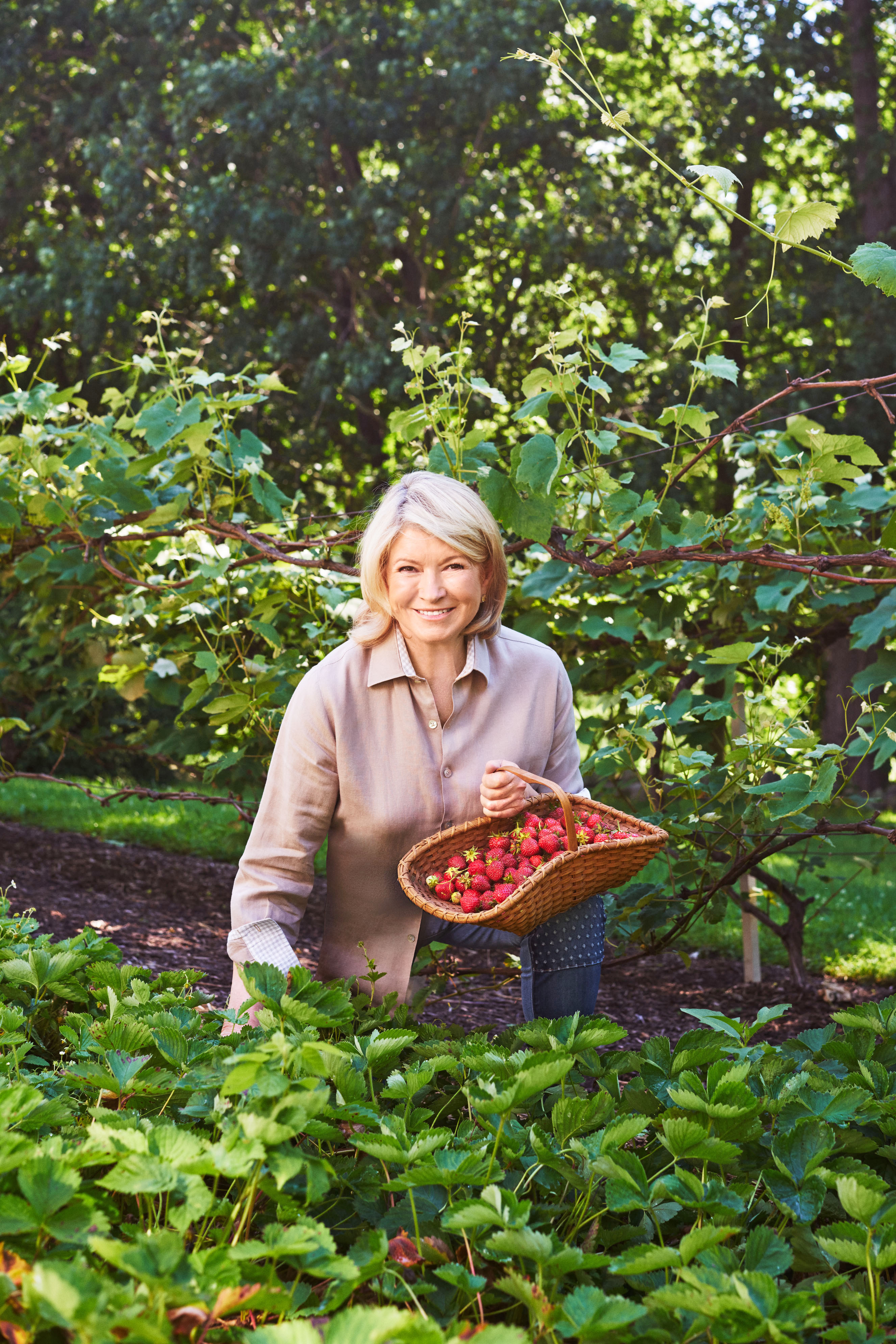 Martha Goes Strawberry-Picking—And Serves Up Her Favorite Recipes!