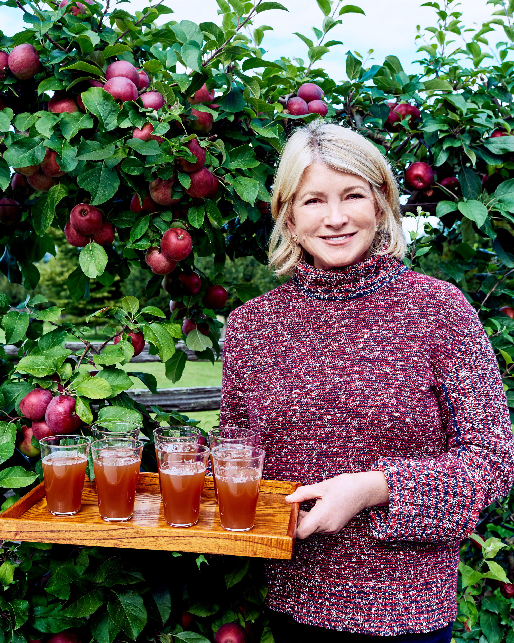 Martha's Favorite Fall Drink? Homemade Apple Cider