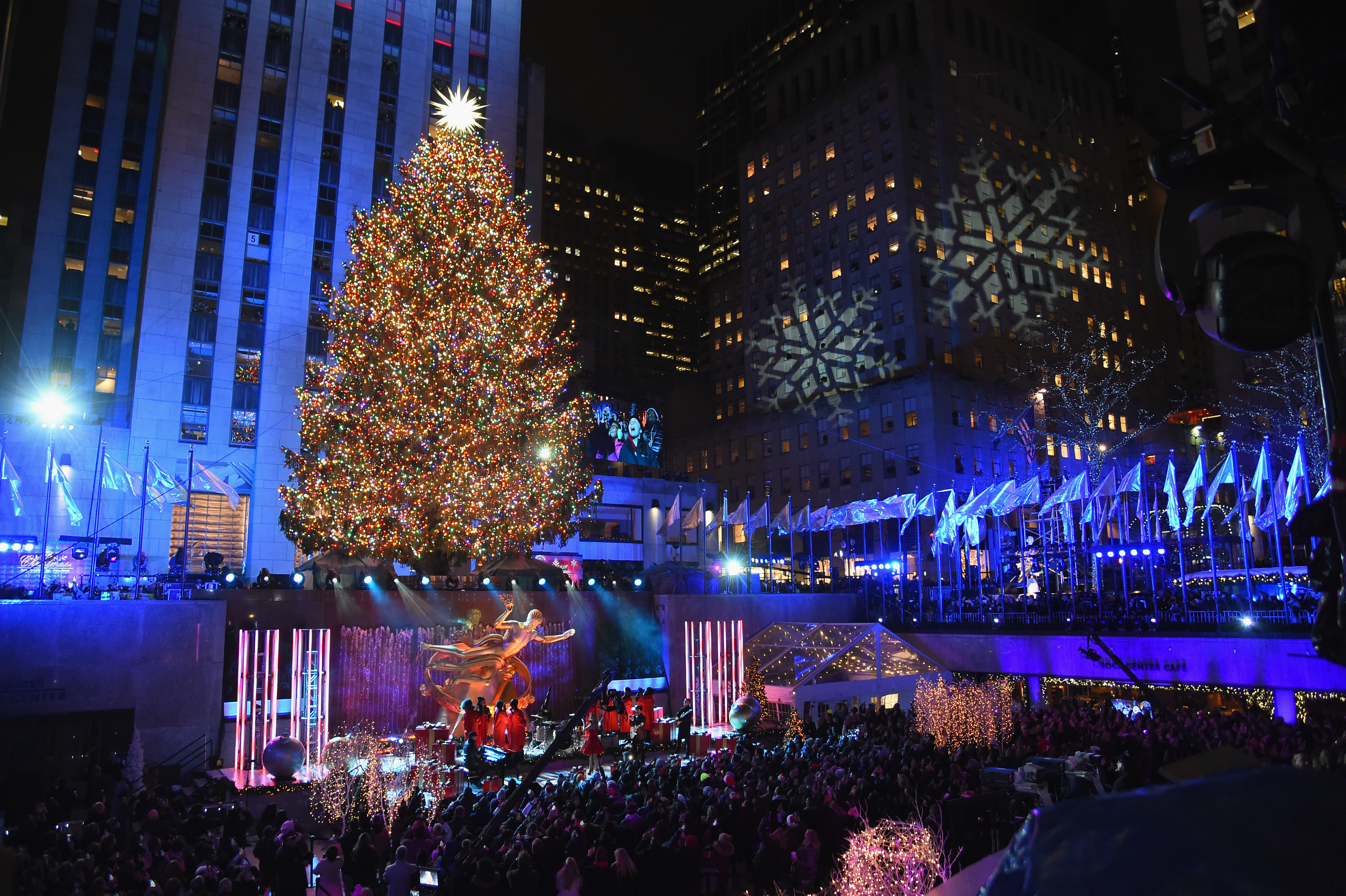 5 Fascinating Facts About the Rockefeller Center Christmas Tree This Year