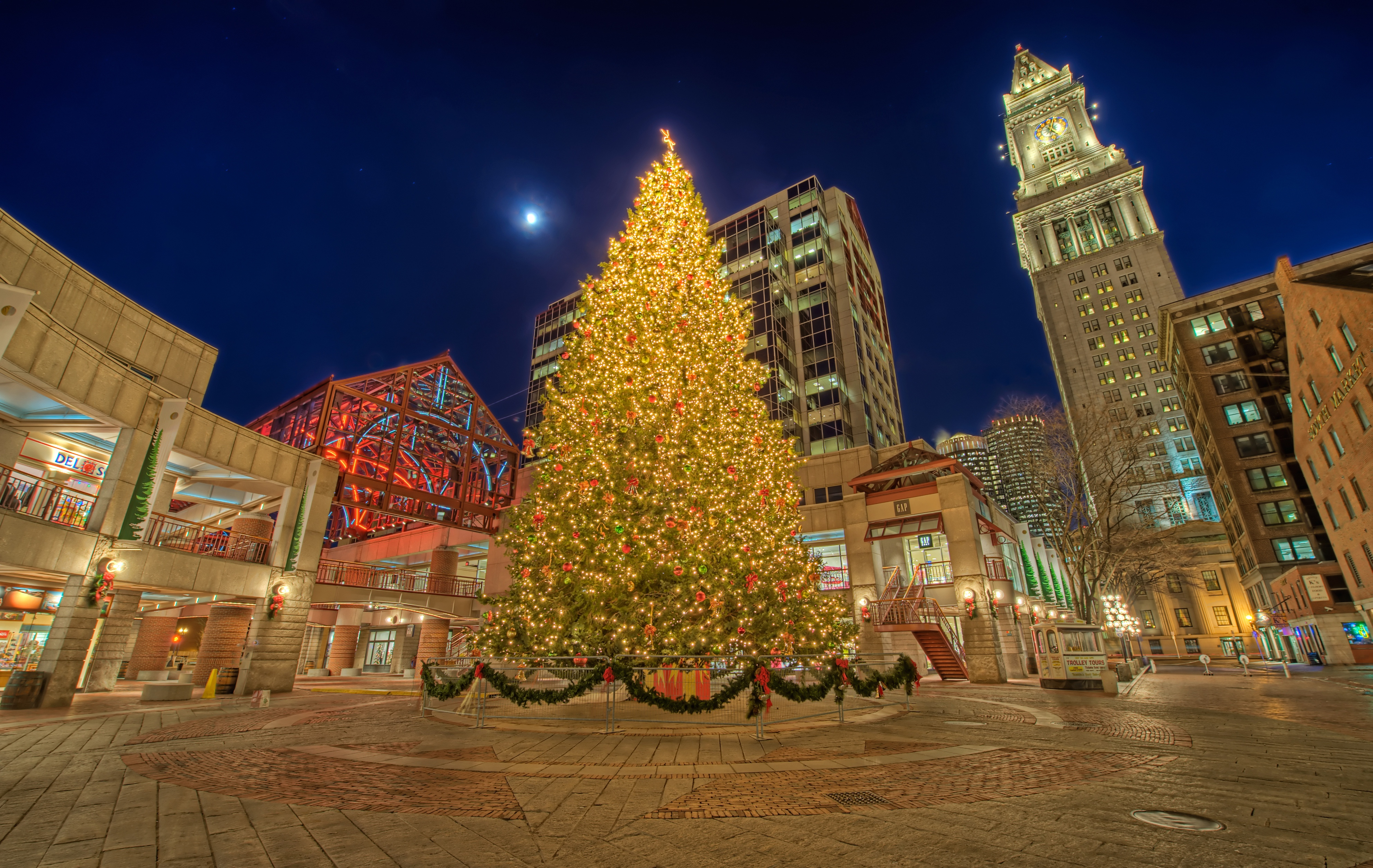 Boston Has Been Gifted a Special Christmas Tree for 2018
