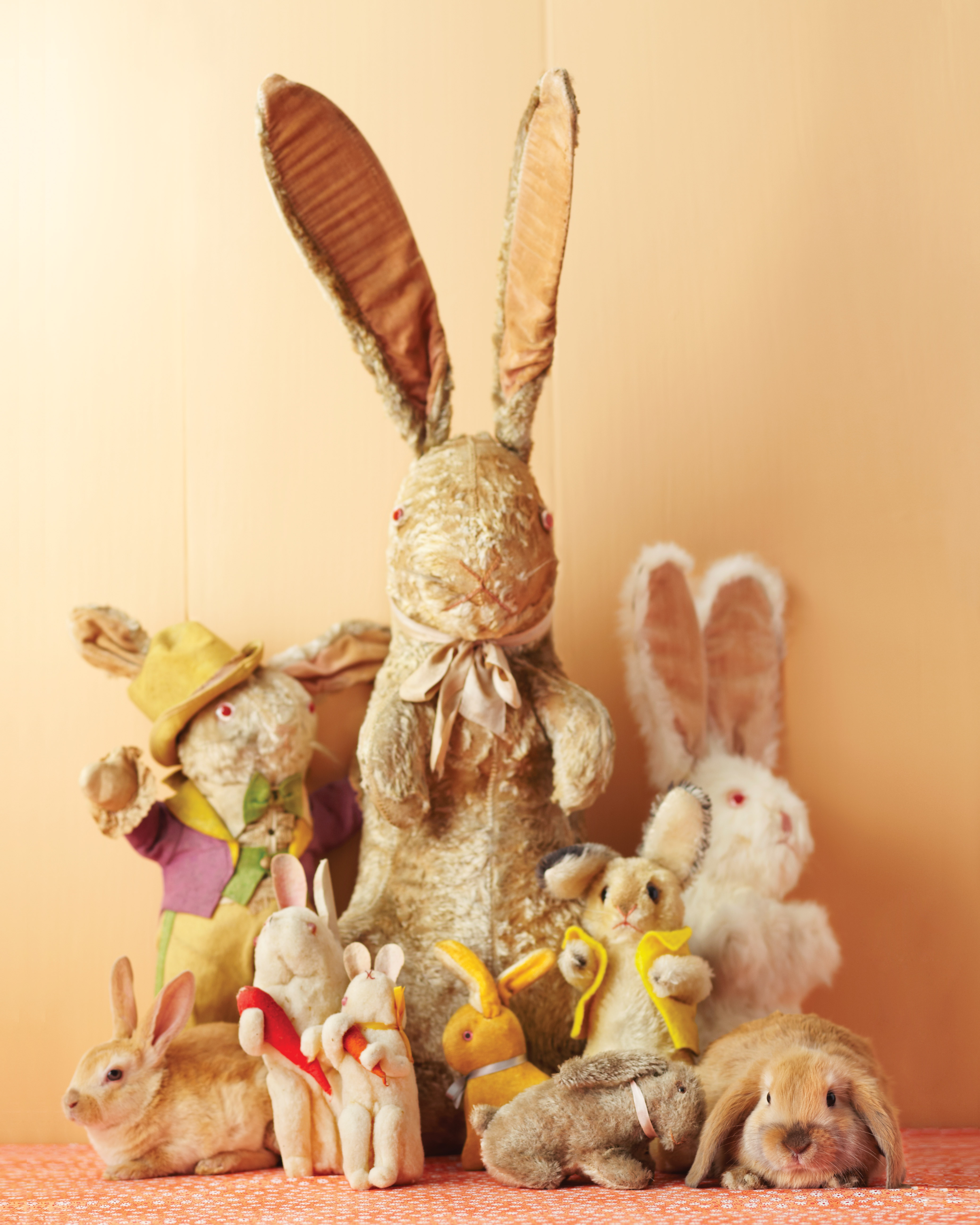 The Easter Bunny's Surprising Origin Story