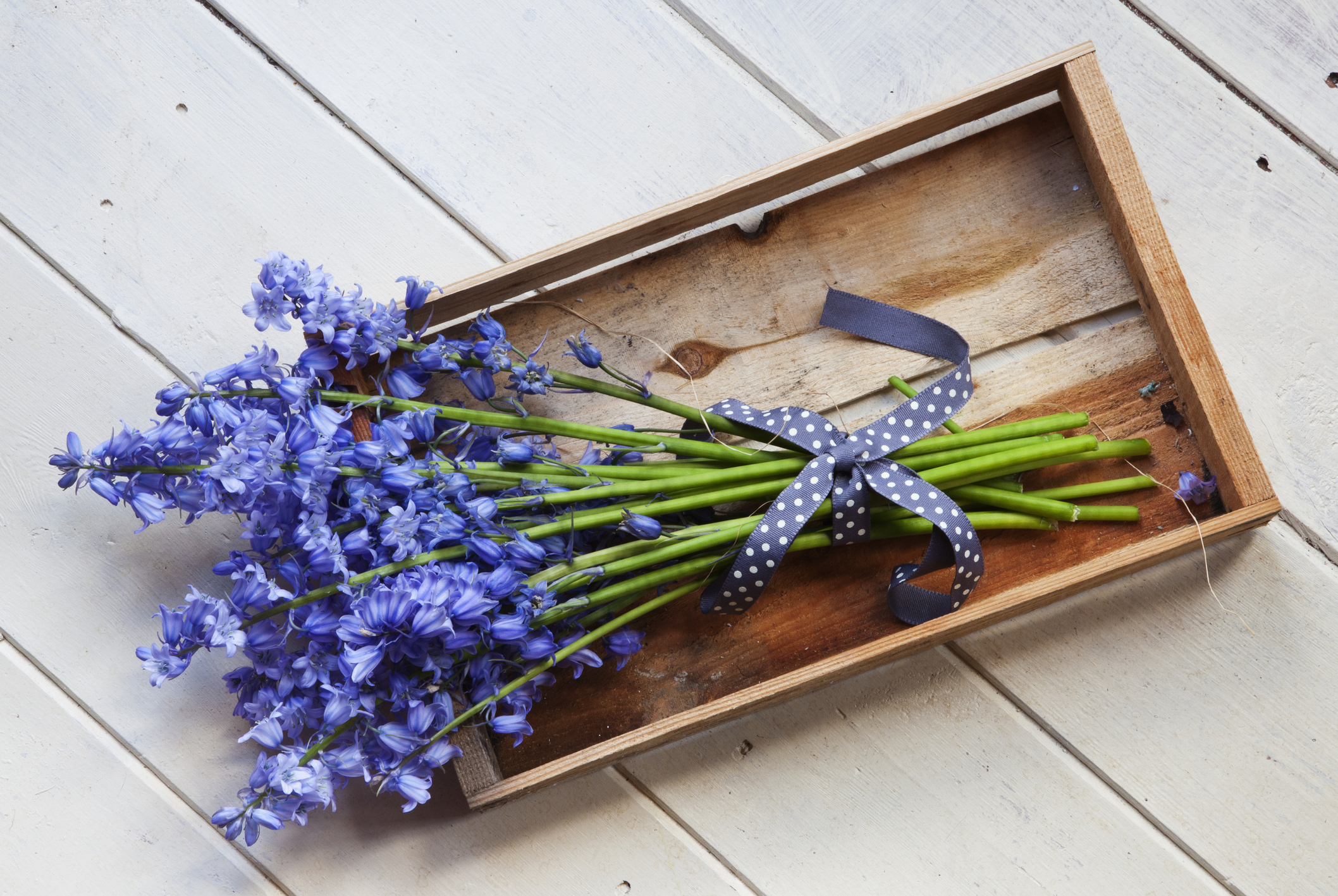 How to Upgrade Your Flower Delivery