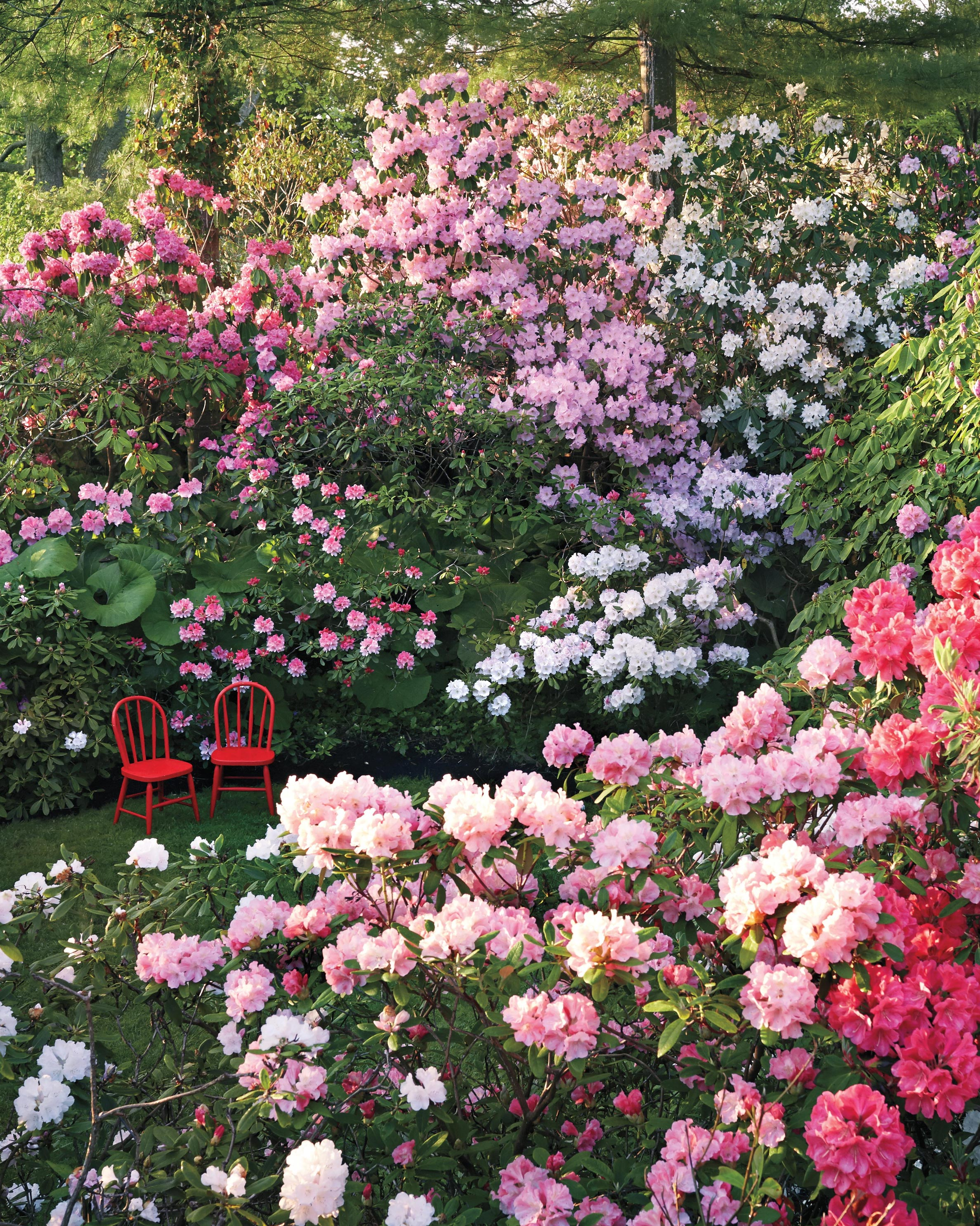 The Best Gardens to Visit Around the U.S.
