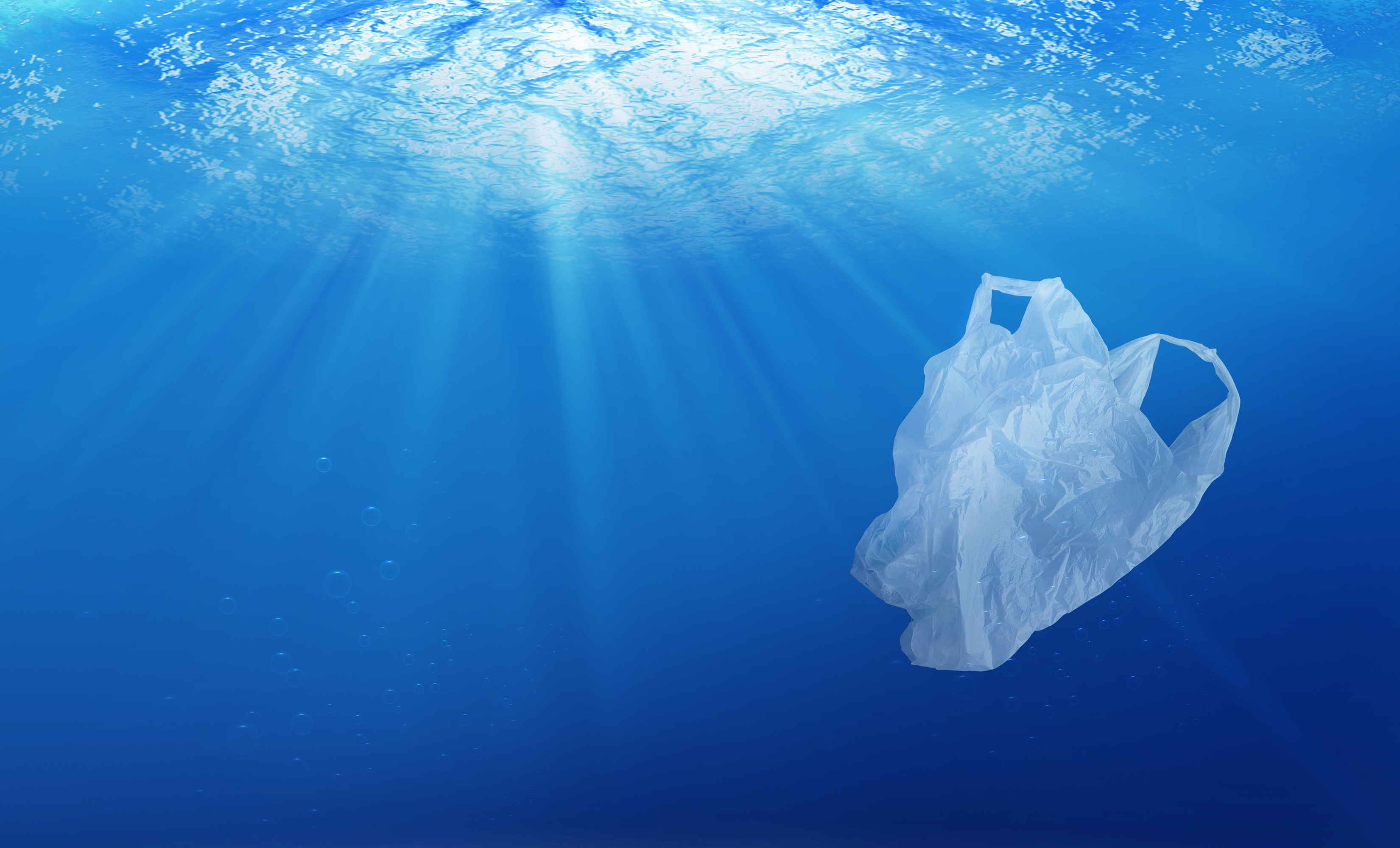Panama Just Became the First Central American Country to Implement a Ban on Single-Use Plastic Bags