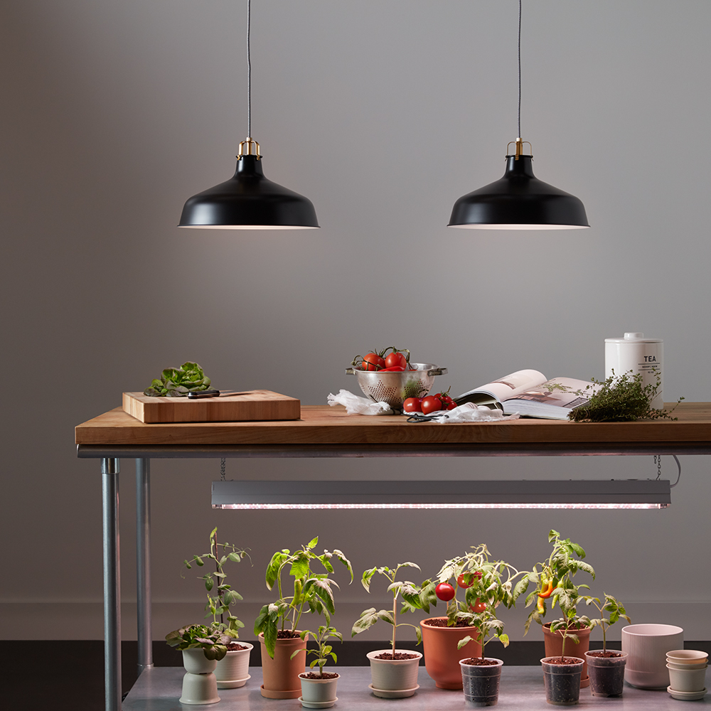 These Indoor Grow Lights Are Surprisingly Chic Martha Stewart