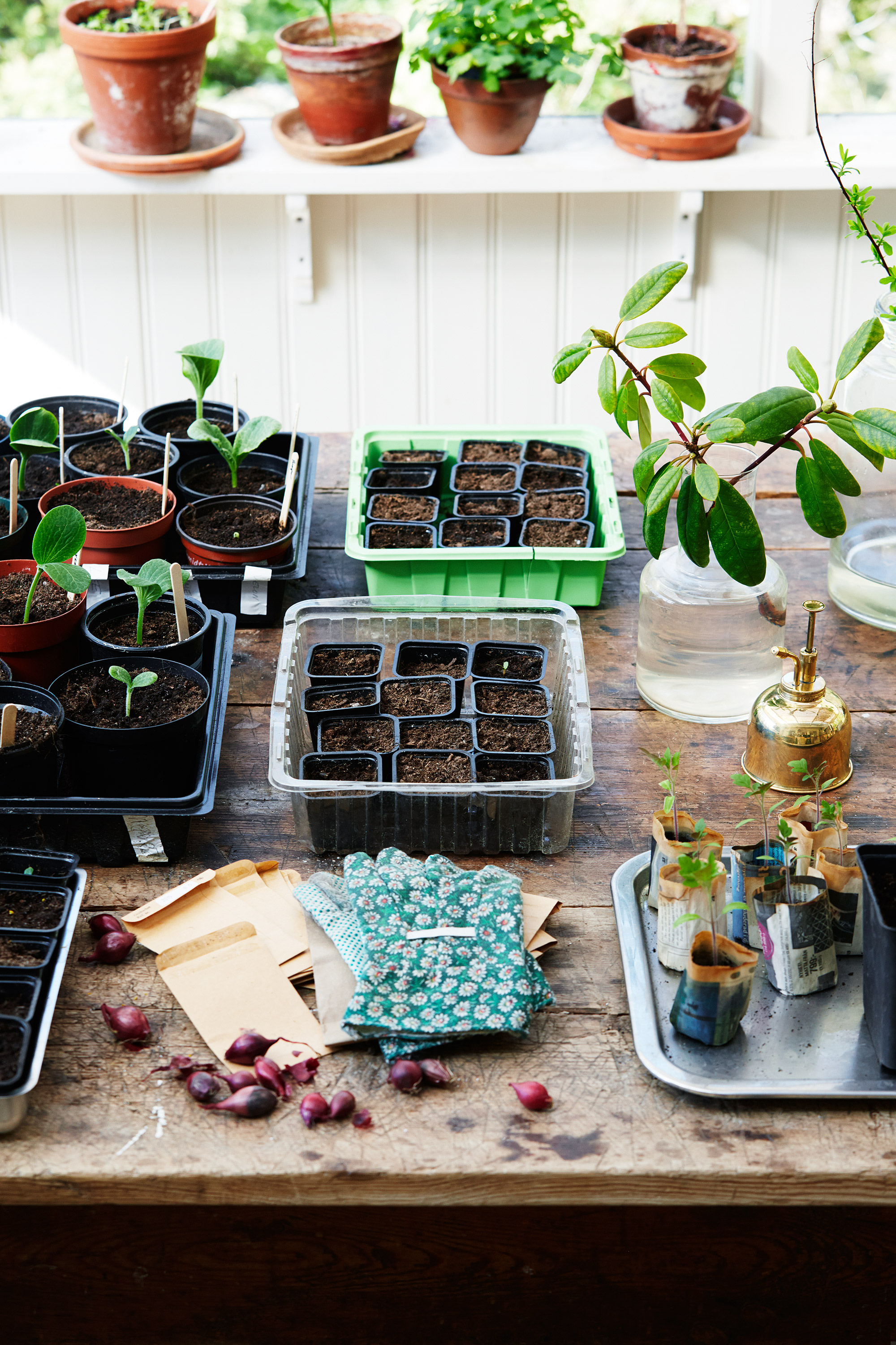 10 Apps Every Gardener Should Have