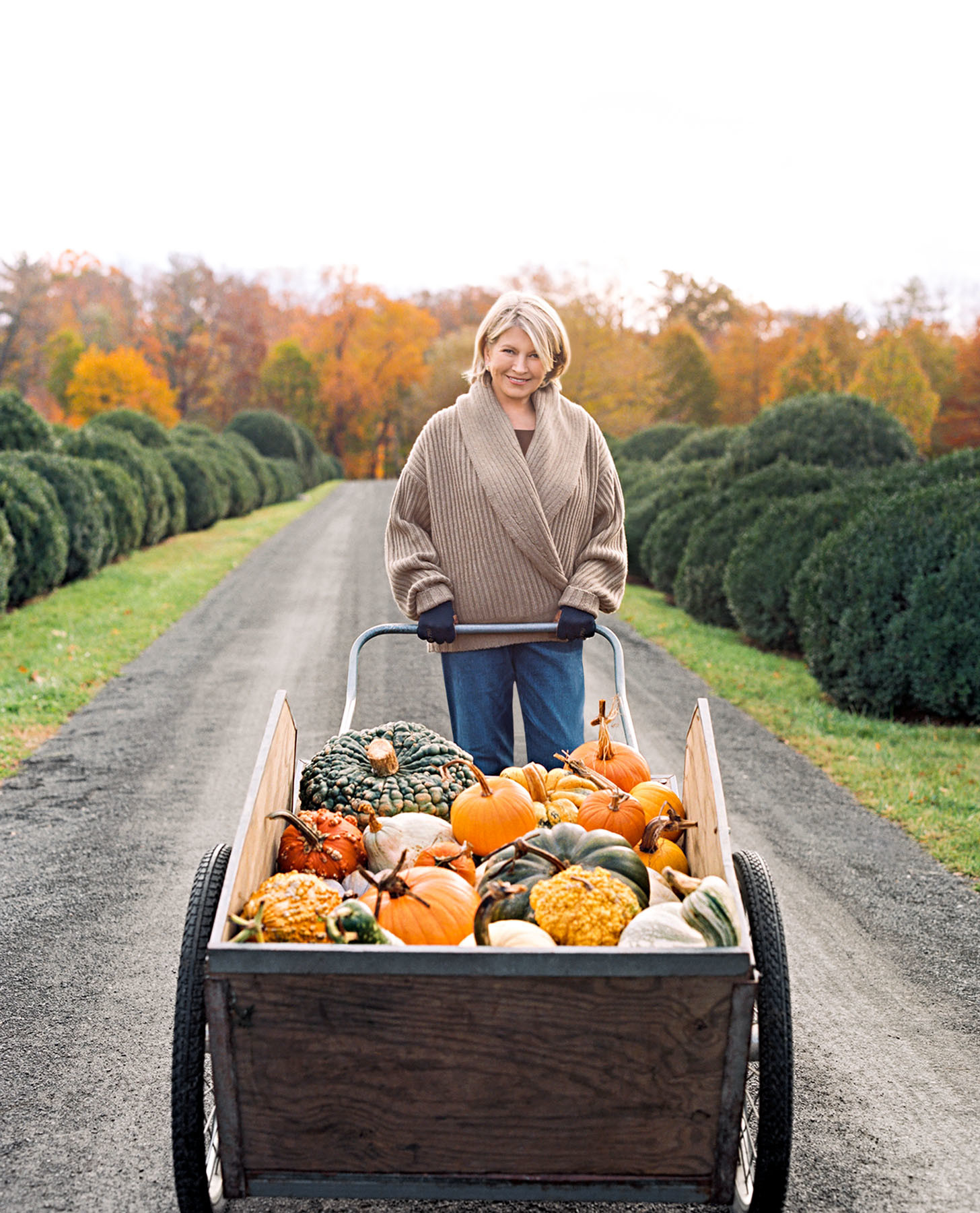 20 Photos from Martha's Homes That Will Get You Excited for Fall