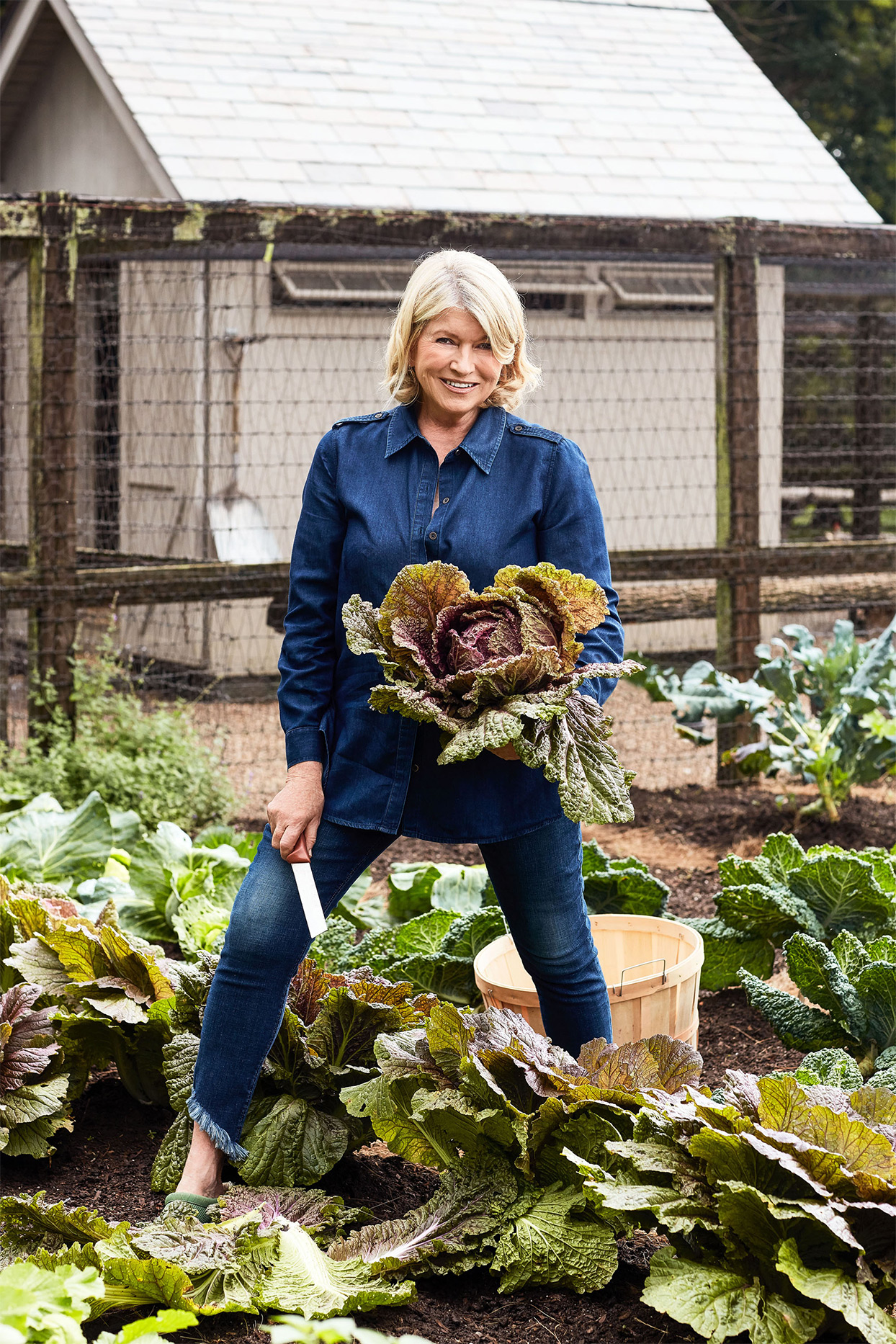 Take a Peek at Martha's Cabbage Patch—Plus, Try Her Favorite Cabbage Recipes