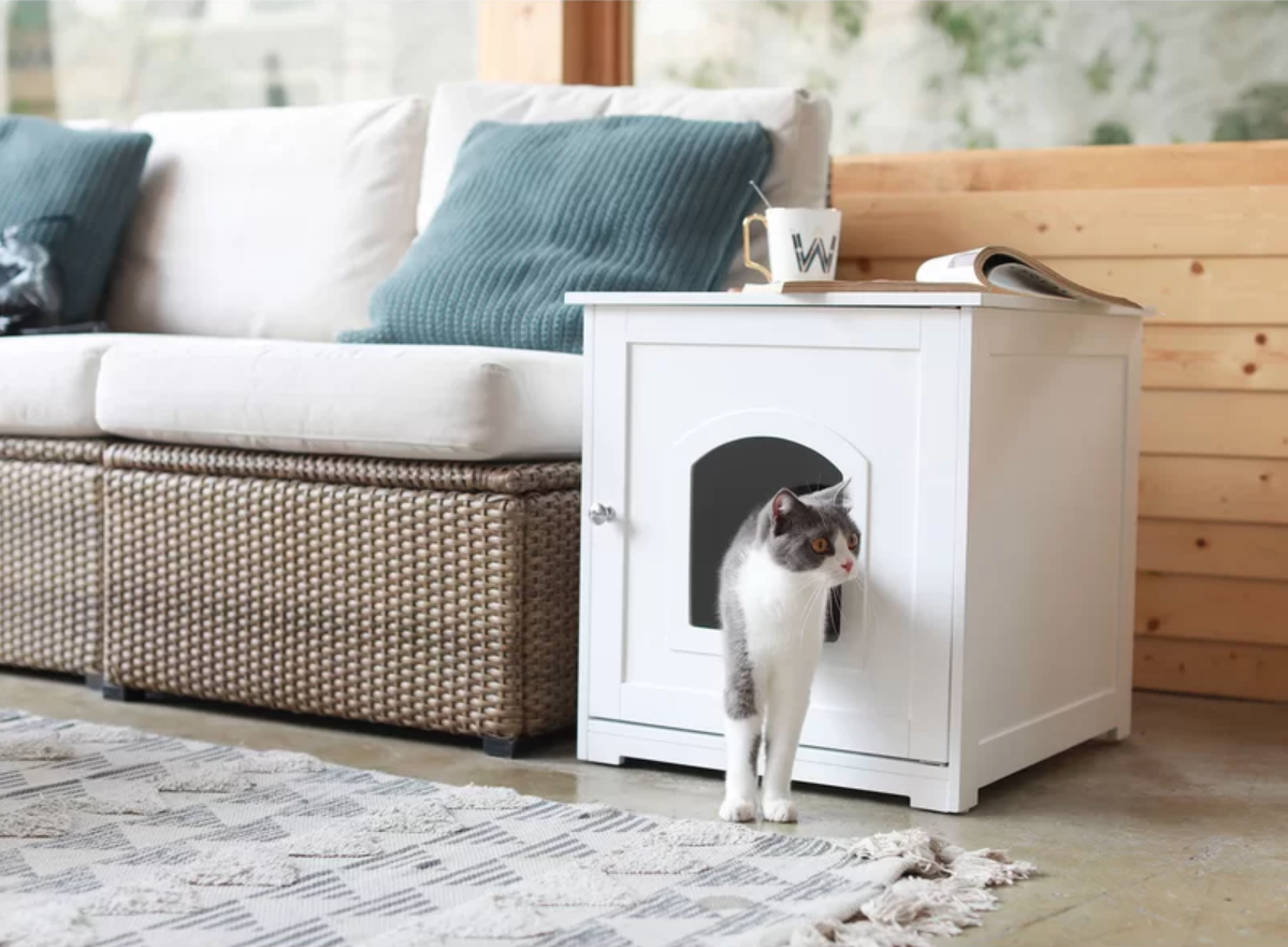 10 Pet Furniture Ideas That Will Fit Seamlessly in Any Home