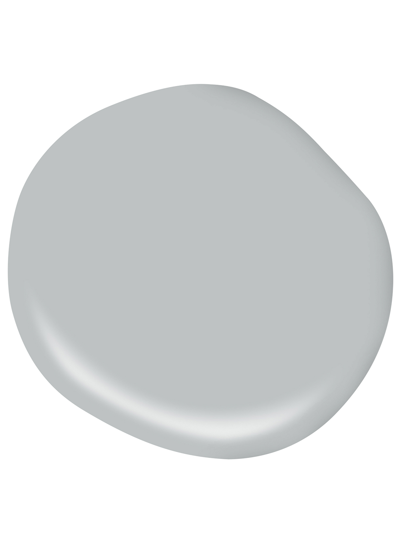 Silvery Gray color swatch
