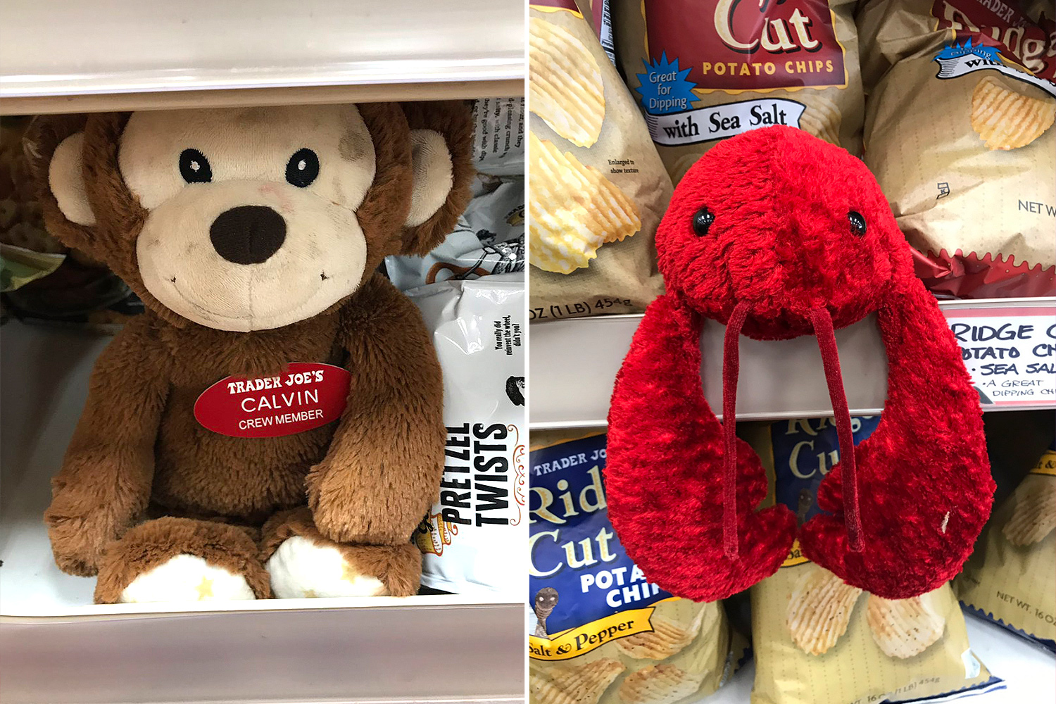 Trader Joe's Hides Stuffed Animals in Most Stores—and If Kids Find Them, They Can Get a Prize