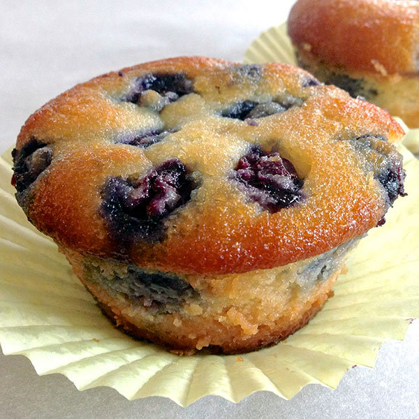 Paleo Blueberry Muffin