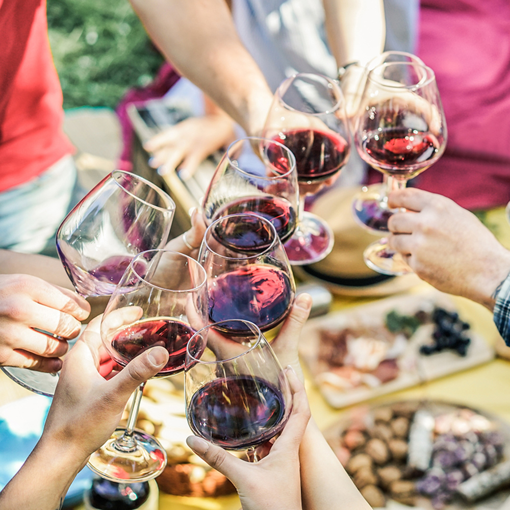 millennials drinking low-carb red wine at a picnic