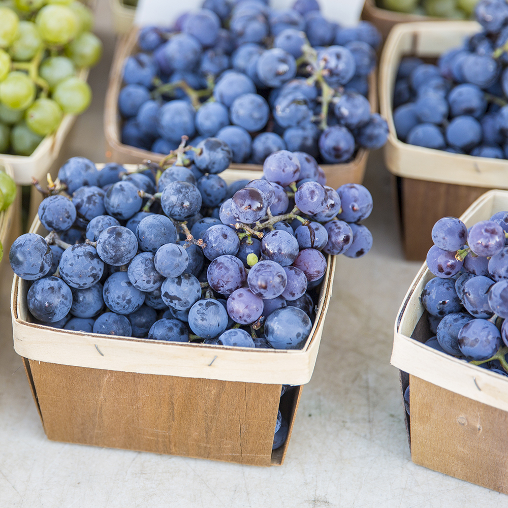 concord grapes anti-aging foods
