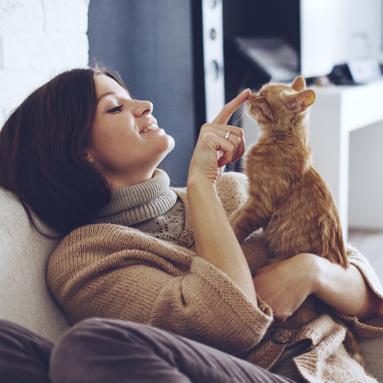 A New Allergy Vaccine Could Finally Let Anyone Become a Cat Person