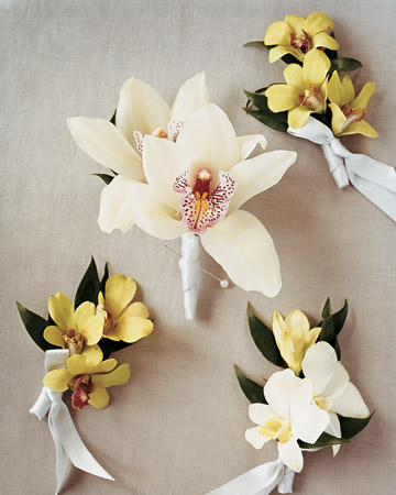 Orchid Boutonnieres
