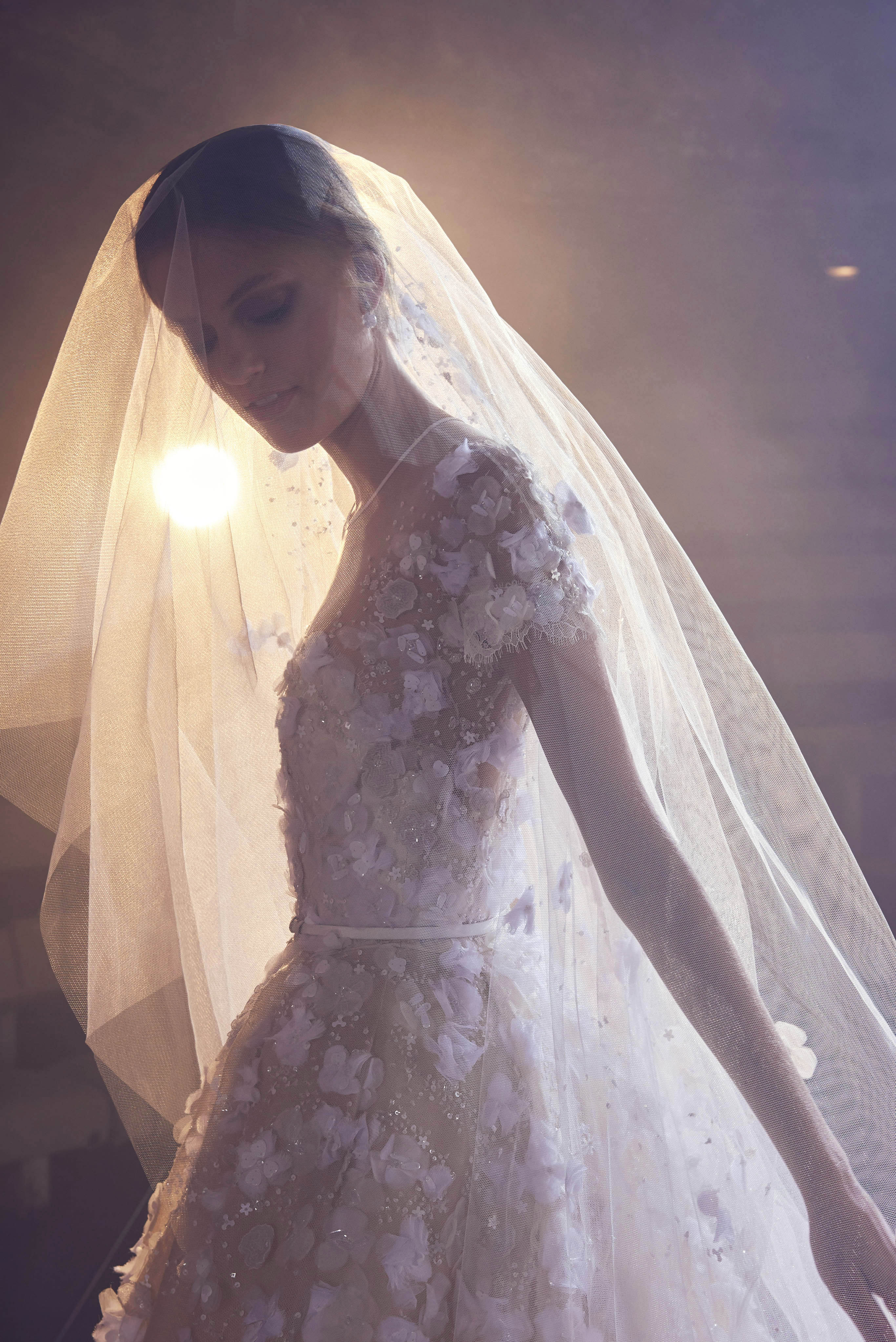 Elie Saab Floral Short Sleeve with Veil Wedding Dress Fall 2018