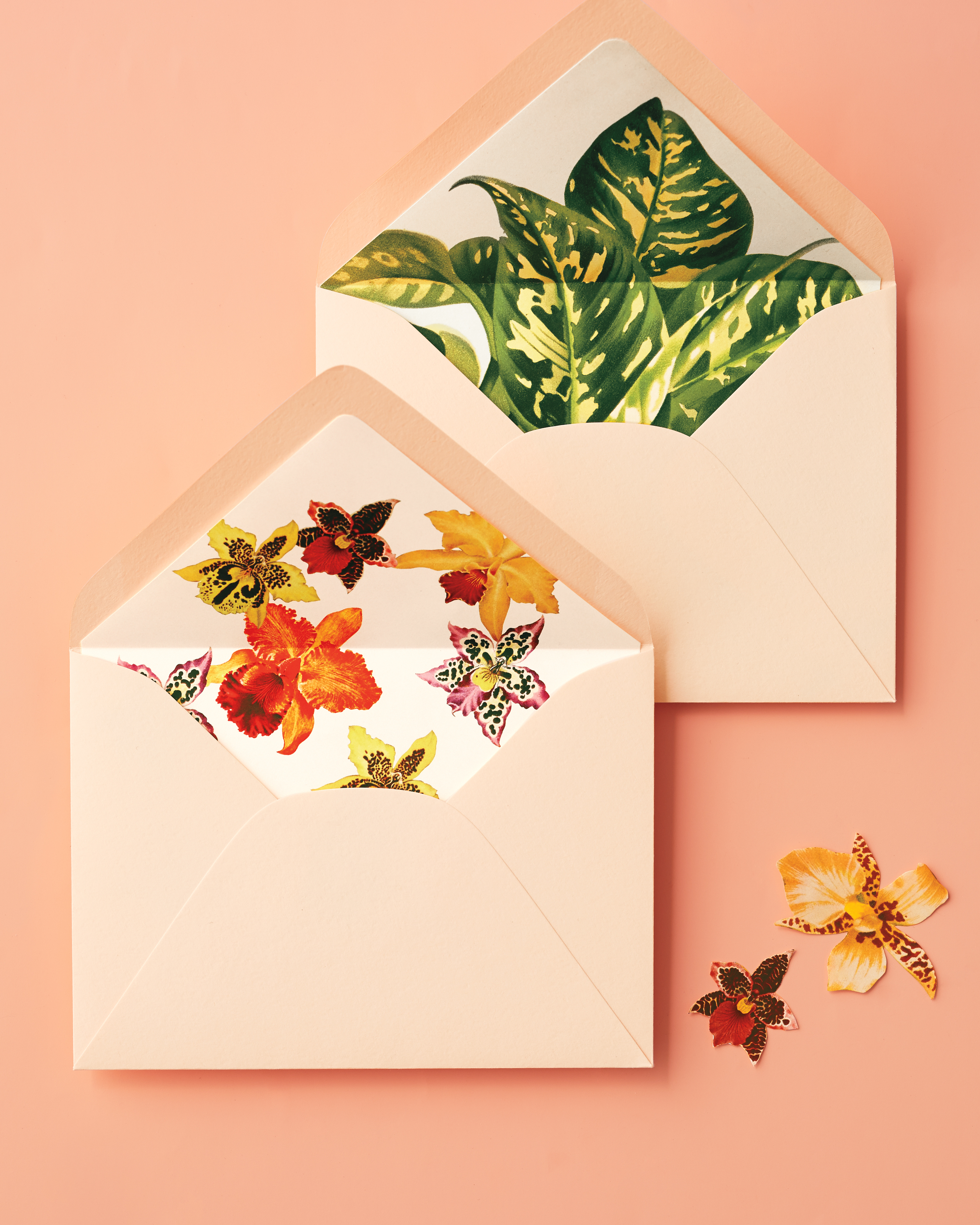 Tropical Envelope Liners