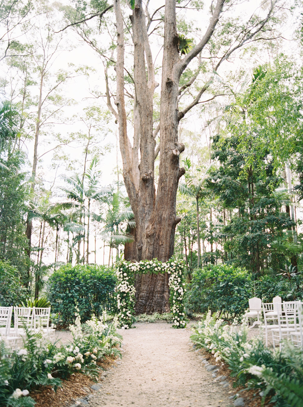 floral ceremony arch in front of tree