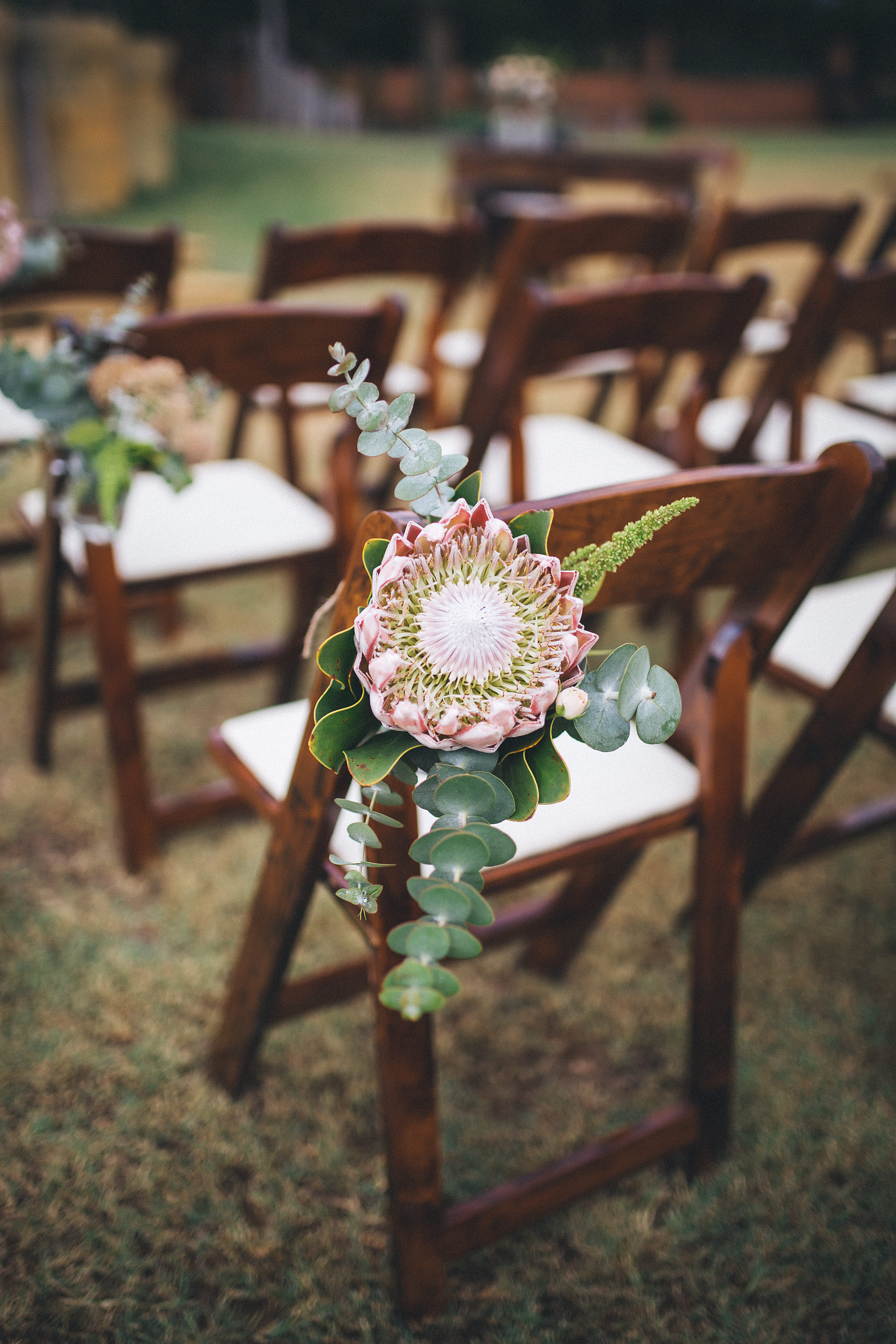 protea chair decoration