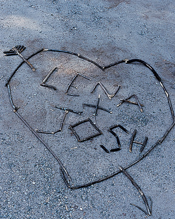 wma101773_spr06_stickheart.jpg