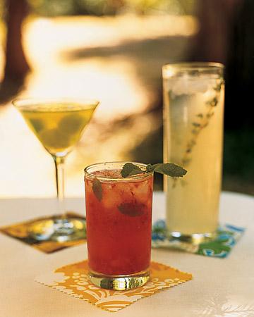 wma101773_spr06_drinks.jpg