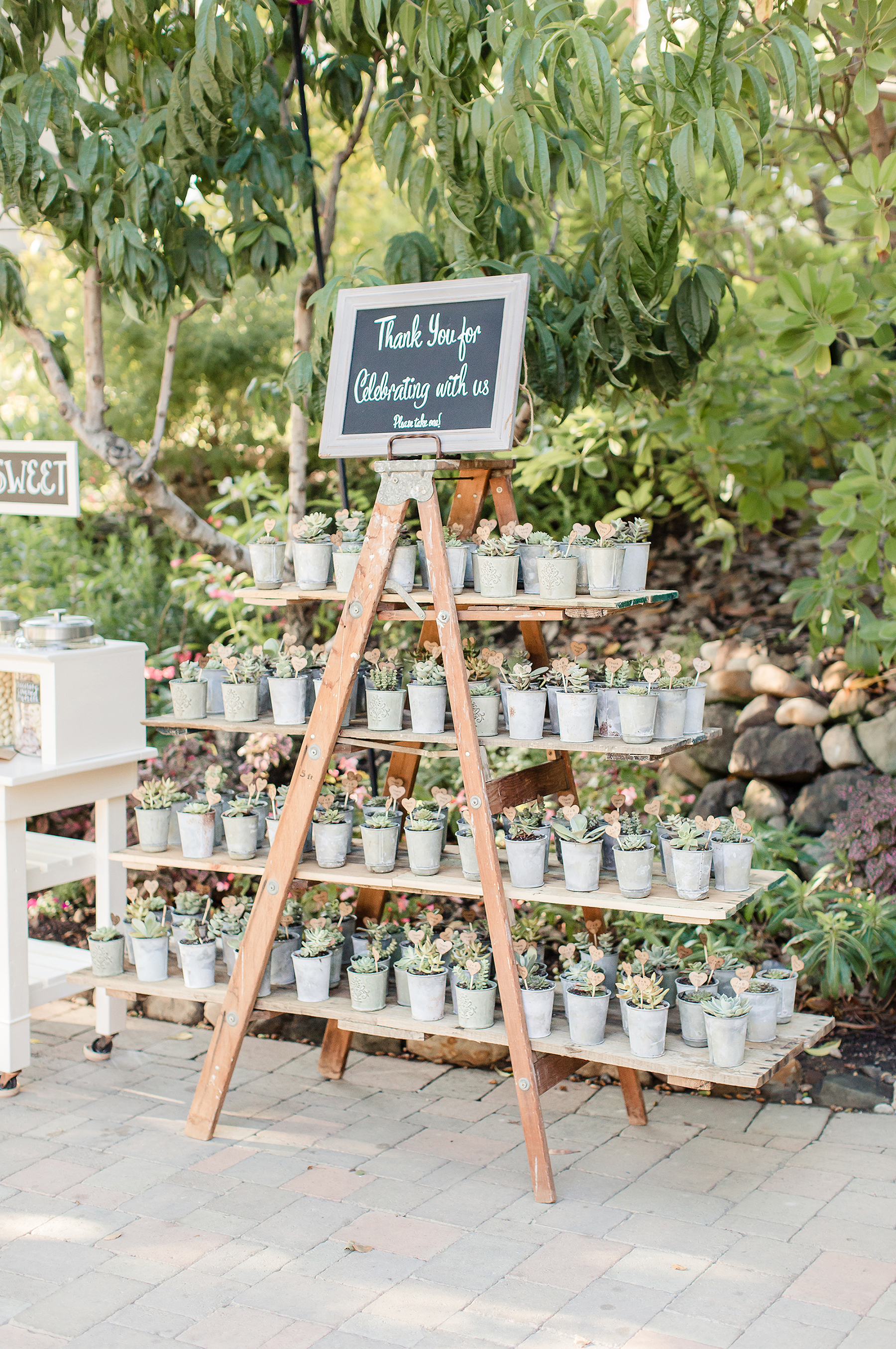favor display with succulents