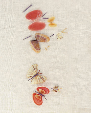 mla103608_0508_butterflies.jpg