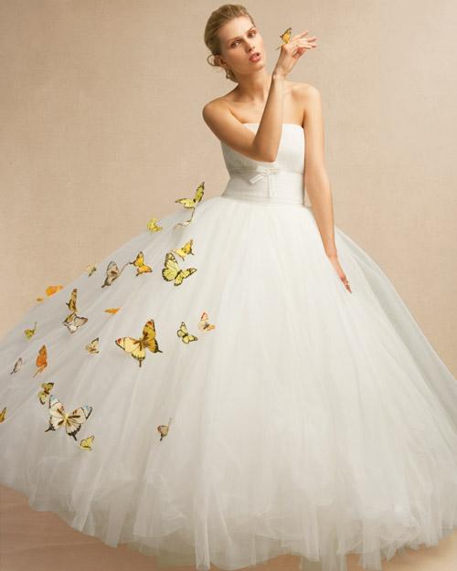 mwd105684_sum10_butterfly1_053.jpg