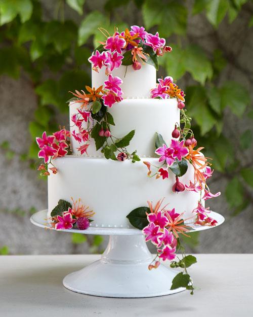 wd106404_win11_cake1.jpg