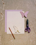 butterfly_spr00_ht_m.jpg