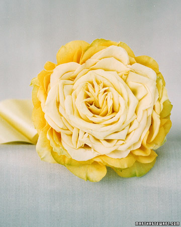 Yellow Roses Reinvented