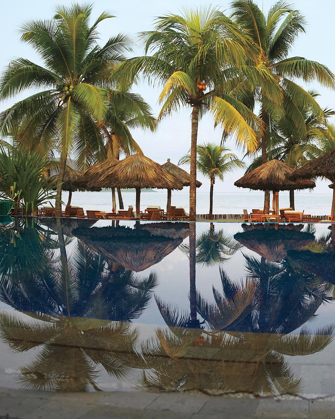 rw-mexico-palm-trees-mwds107779.jpg