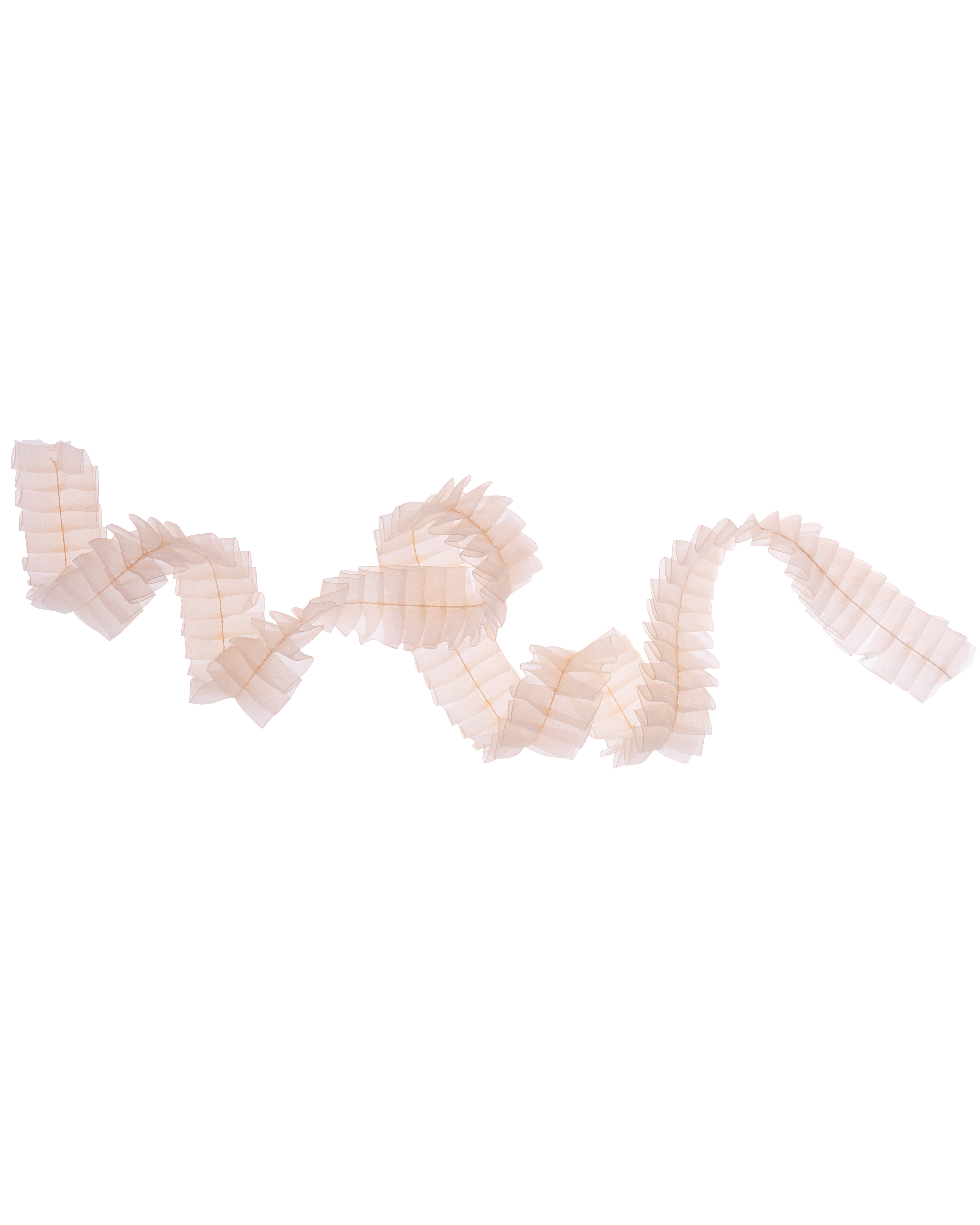 ribbon-0811mwd107539.jpg