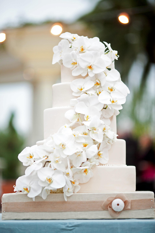 orchid flower wedding ideas caroline tran white lilac inc